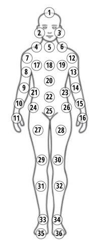 Body Checklist Front